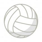 【リオオリンピック】バレーボール代表選手や日程・予選まとめ