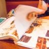 【予言者育成学園攻略】問85.「sweet」4月号で表紙を飾るモデルの衣装総額は?【FTA予想】